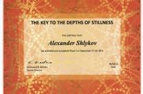 Stillness-RmanuelBirsteyn